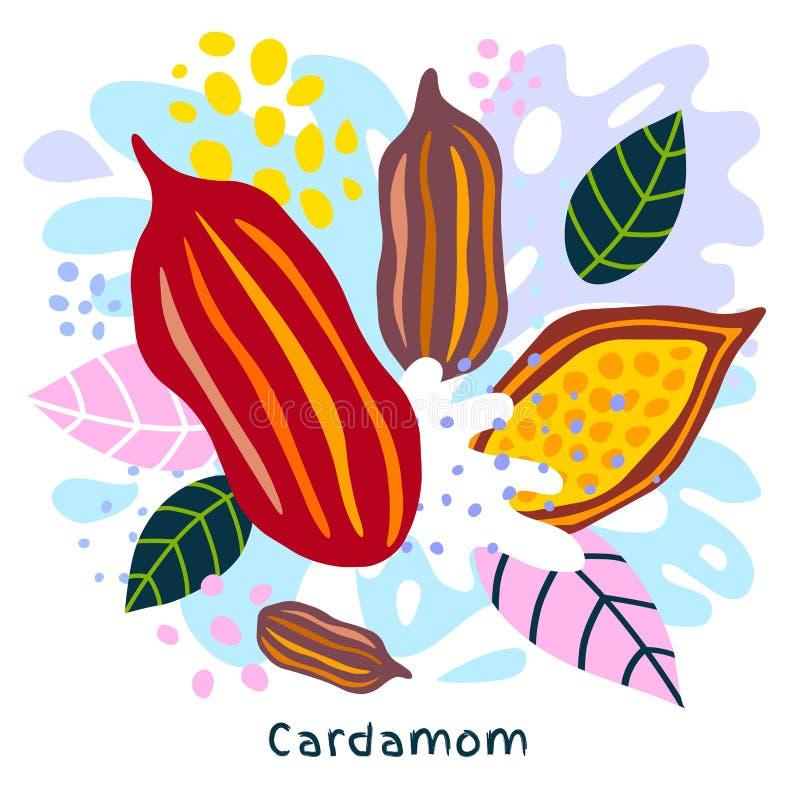 Świeży kardamonu soku pluśnięcia żywności organicznej condiment pikantności splatter na abstrakcjonistycznym kolorowym splatter p ilustracji