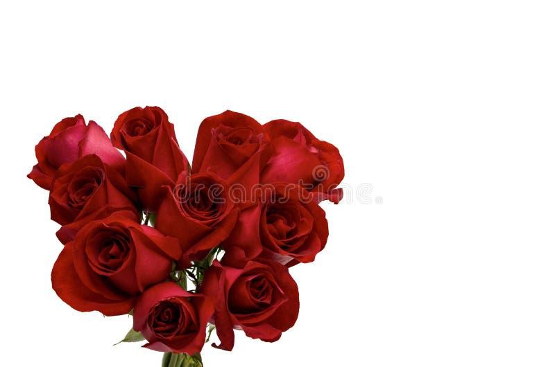Świeży kwiat miłości kształt czerwone róże zdjęcia royalty free