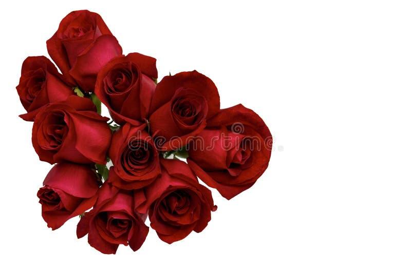 Świeży kwiat miłości kształt czerwone róże obraz royalty free