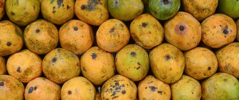 Świeży mango przy rynkiem obrazy royalty free