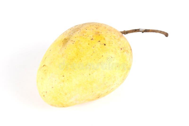 Download świeży mangowy kolor żółty obraz stock. Obraz złożonej z tło - 53788403