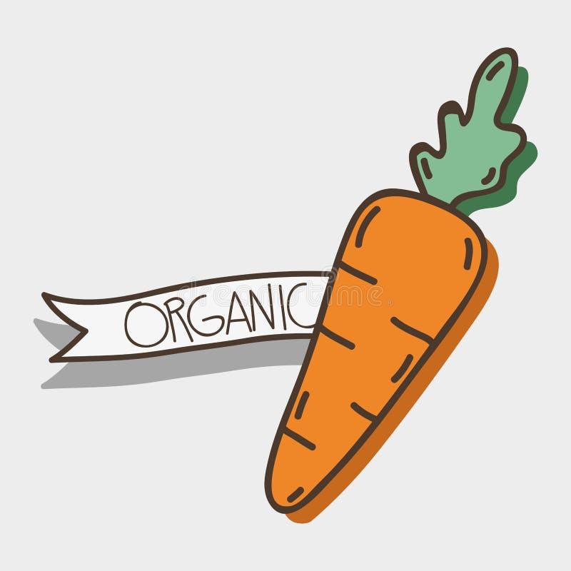 Świeży marchwiany organowy warzywo z faborkiem royalty ilustracja