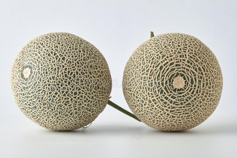 Świeży melon na białym tle obraz royalty free