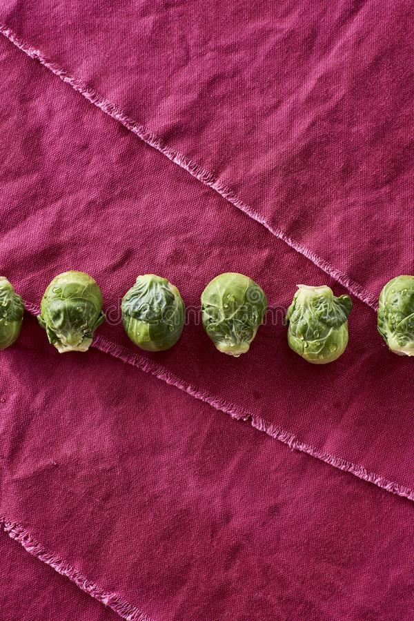 Świeży Myjący Organicznie Brussel - flancy Brassica oleracea var gemma zdjęcie stock