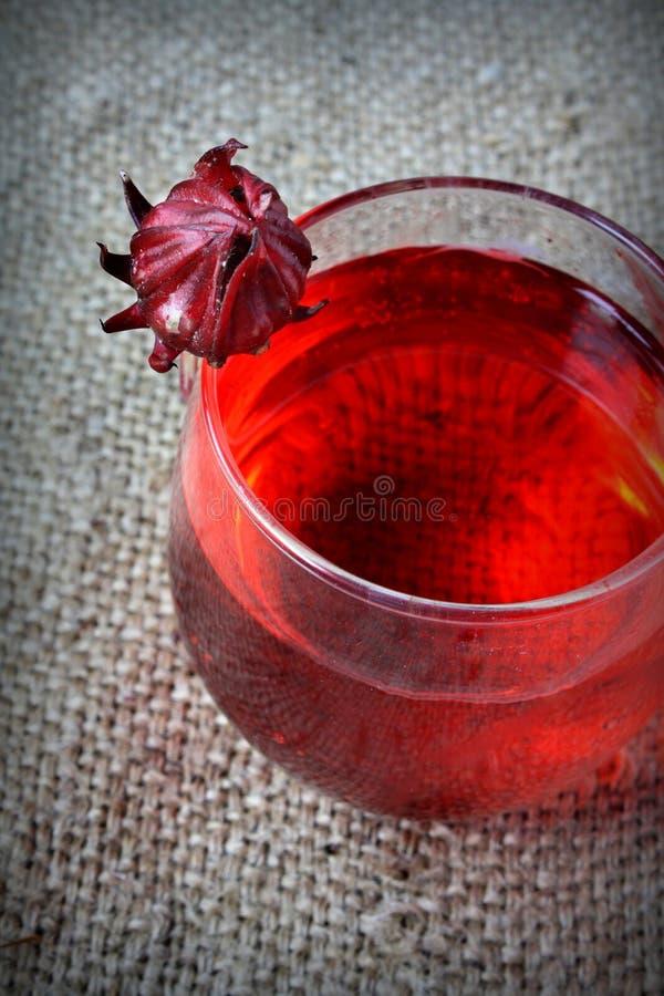 Świeży napój od Rosella lub roselle owoc fotografia stock