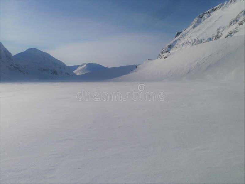 Świeży Niezakłócony opad śniegu Norwegia zdjęcia stock