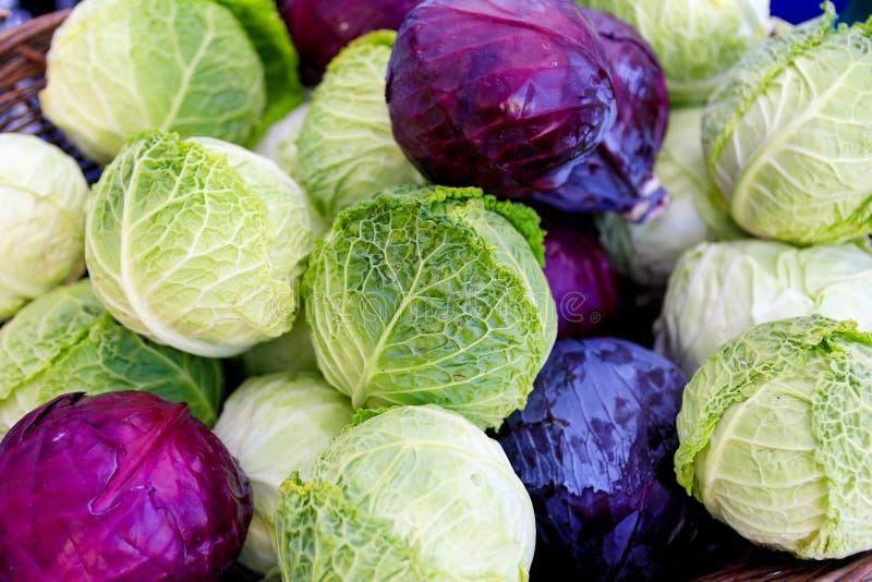 Świeży organicznie kabaczek przy lokalnym rolnika ` rynkiem obrazy stock
