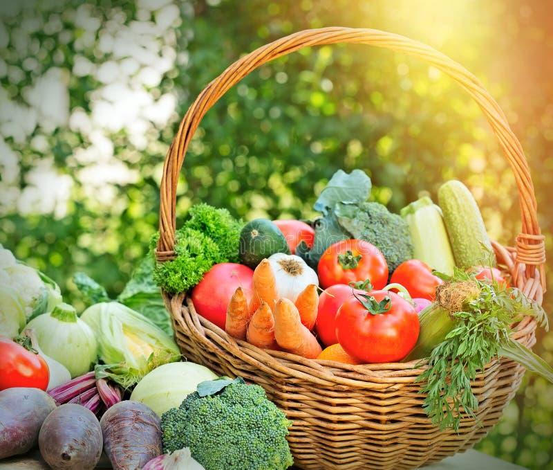 Świeży organicznie warzywo fotografia stock