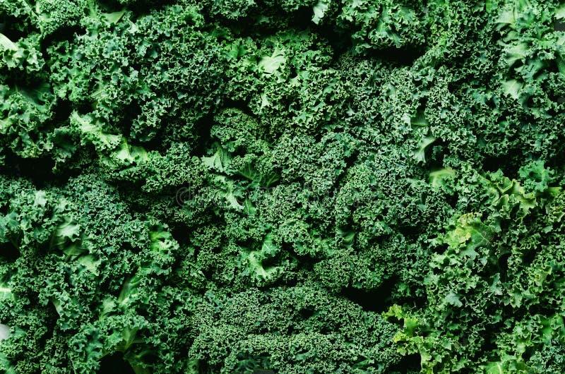 Świeży organicznie zielony kale tło, selekcyjna ostrość, odgórny widok, kopii przestrzeń zielona konsystencja fotografia royalty free