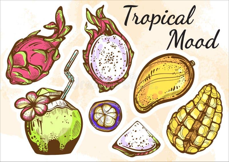Świeży owoc wektoru pięknie szczegółowy set Pociągany ręcznie tropikalne owoc odizolowywać Perfect menu szablon dla jarosza, wega royalty ilustracja