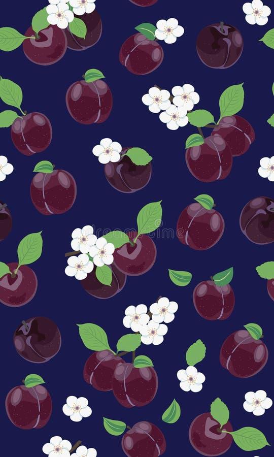 Świeży purpurowy śliwkowy bezszwowy wzór z białym czereśniowym okwitnięciem na błękitnym tle ilustracji