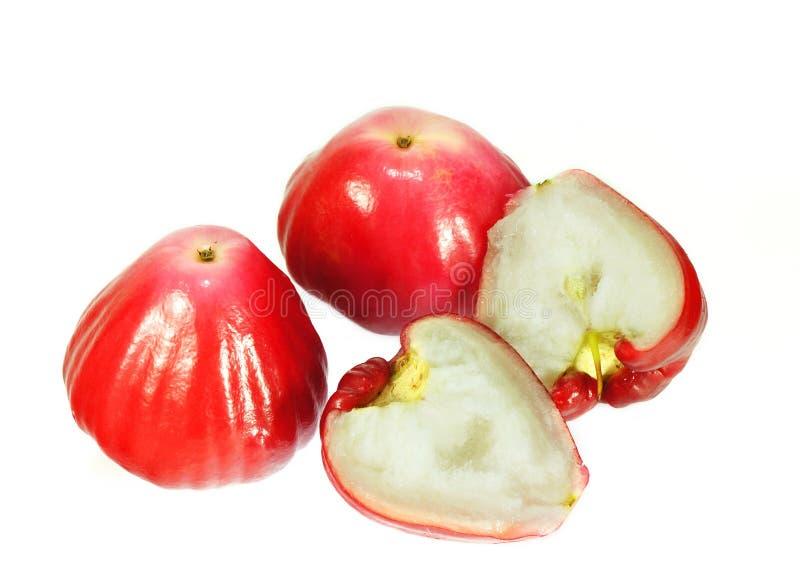 Świeży Różany jabłko obraz stock