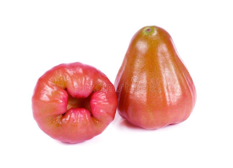 Świeży różany jabłko na białym tle obrazy stock