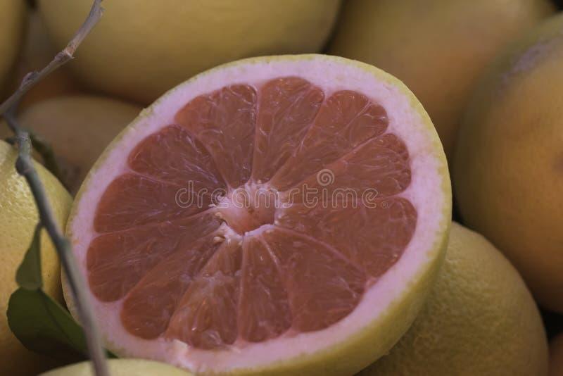 Świeży różowy grapefruitowy pokrojony otwiera z liściem i gałązką obrazy royalty free
