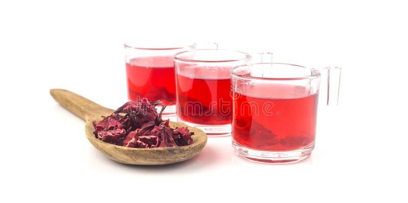 Świeży roselle sok na białym tle obrazy stock