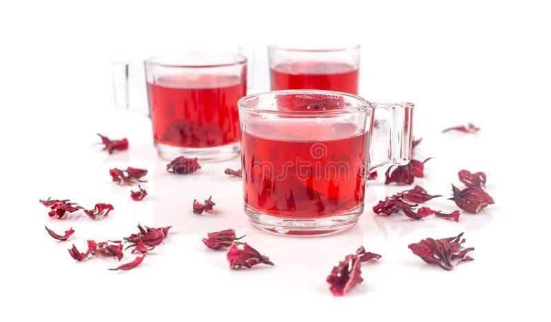 Świeży roselle sok na białym tle obraz royalty free