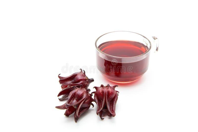 Świeży roselle sok - zdrowy napój na bielu zdjęcie royalty free