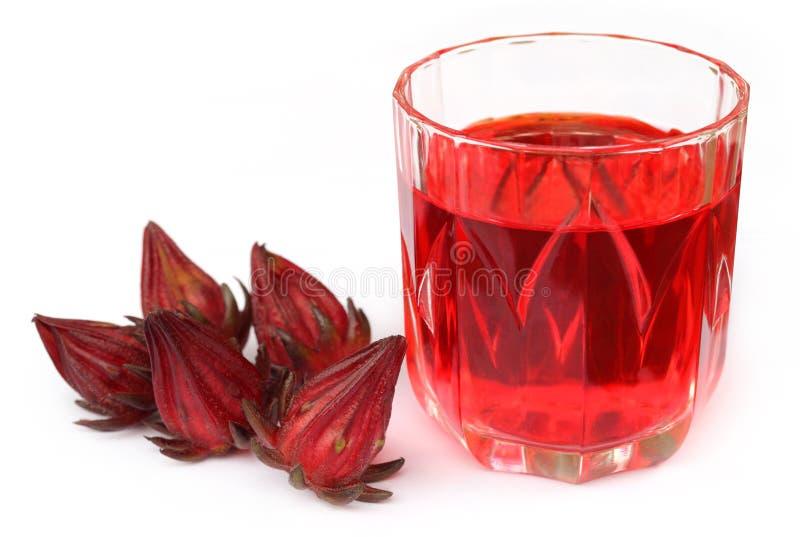 Świeży roselle z sokiem obrazy stock