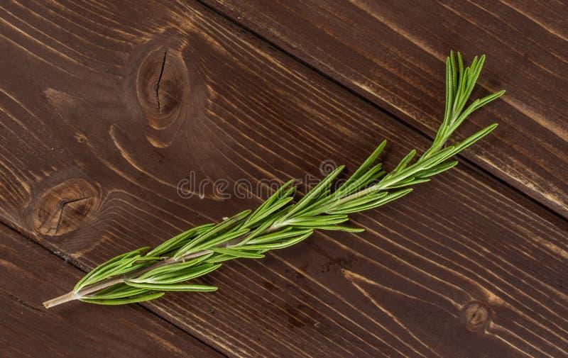 Świeży rozmarynowy ziele na brązu drewnie obraz royalty free