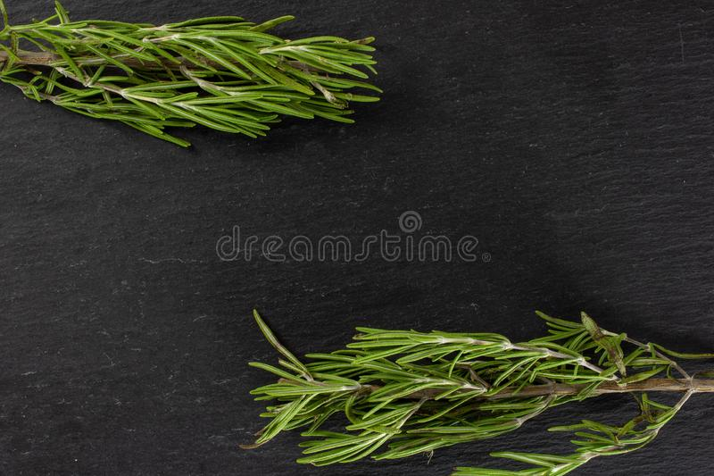 Świeży rozmarynowy ziele na popielatym kamieniu obrazy stock