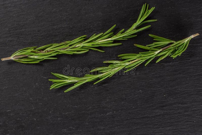 Świeży rozmarynowy ziele na popielatym kamieniu obrazy royalty free