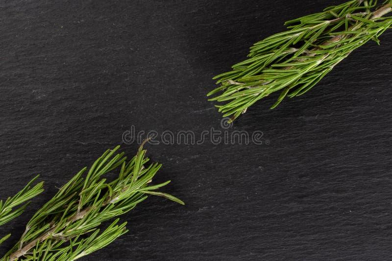 Świeży rozmarynowy ziele na popielatym kamieniu fotografia royalty free