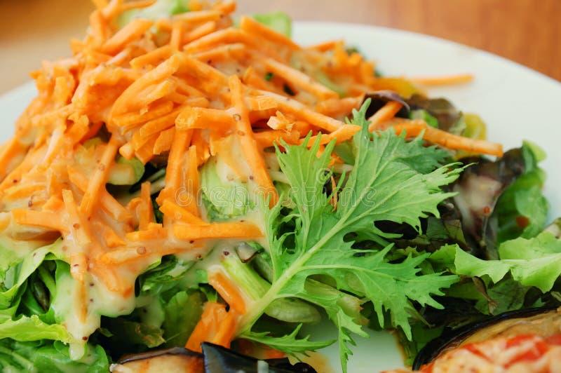 świeży sałatkowy warzywo obrazy stock