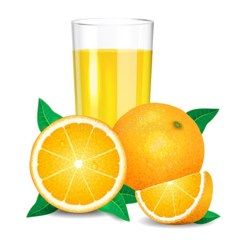 Świeży sok pomarańczowy i kawałki pomarańcze, cytrusa sok i pomarańcze, royalty ilustracja