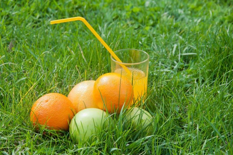 Świeży sok pomarańczowy w szkle zostaje na zielonej trawie blisko owoc fotografia royalty free