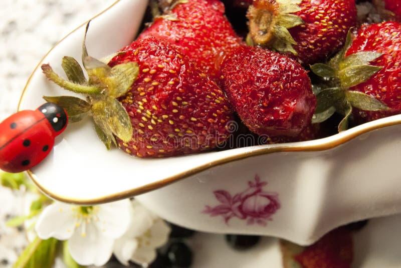 Świeży, witaminy truskawka na zakąsce fotografia stock