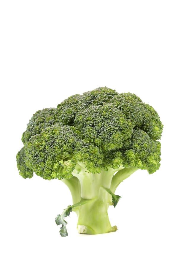 Świeży zdrowy brocoli zdjęcia royalty free