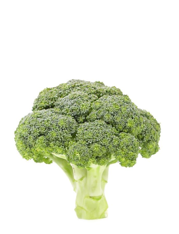 Świeży zdrowy brocoli. zdjęcia stock