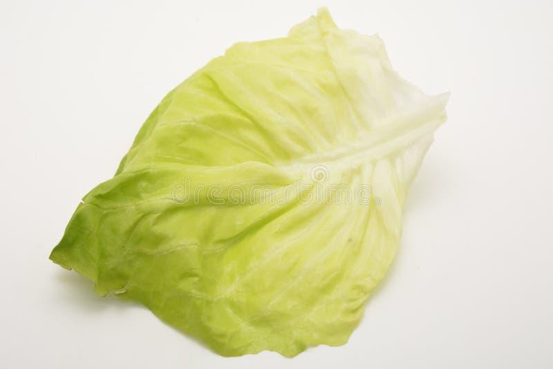 Świeży zielonej sałatki liść odizolowywający na białych tło warzywach karmowych dla jarskich ludzi zdjęcia royalty free