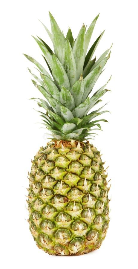 Świeży Zielony ananas fotografia royalty free
