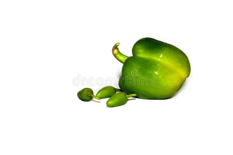 Świeży zielony capsicum, dzwonkowy pieprz lub pieprz z białym tłem obraz stock