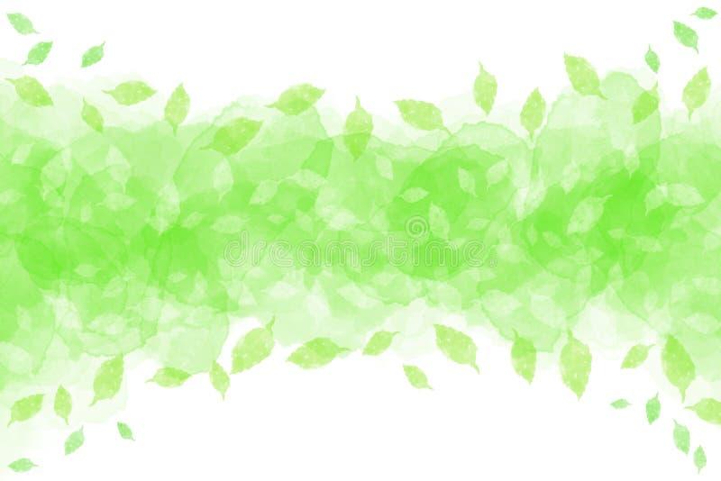 Świeży zielony liścia abstrakt na akwareli tle royalty ilustracja