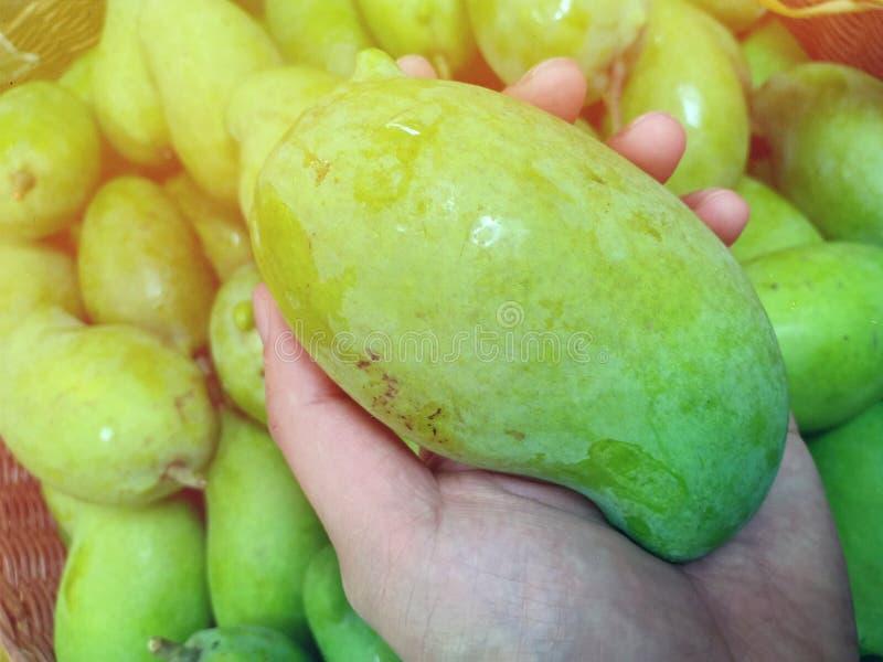 Świeży zielony mango w lokalnym rynku w Tajlandia obrazy stock