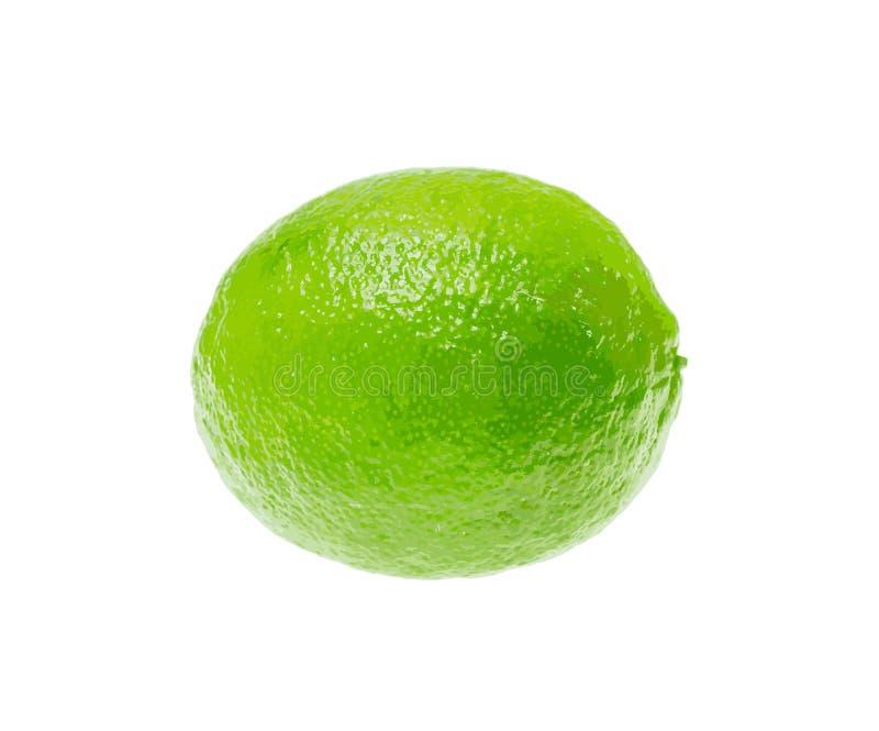 Świeży Zielony wapno Odizolowywający na Białym tle. Wektorowa ilustracja. ilustracja wektor