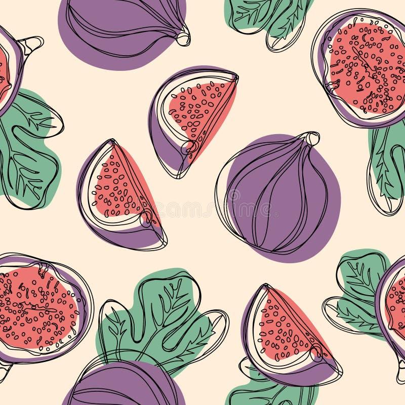 Świeżych fig bezszwowy wzór Owoc z połówką i ćwiartką odizolowywającymi na białym tle wektor ilustracji