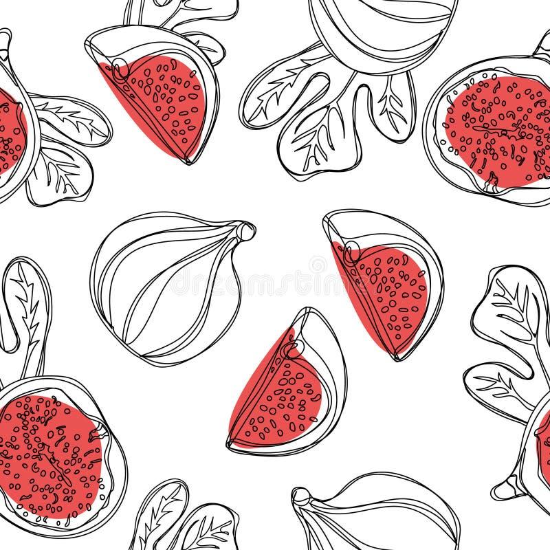 Świeżych fig bezszwowy wzór Owoc z połówką i ćwiartką odizolowywającymi na białym tle wektor royalty ilustracja