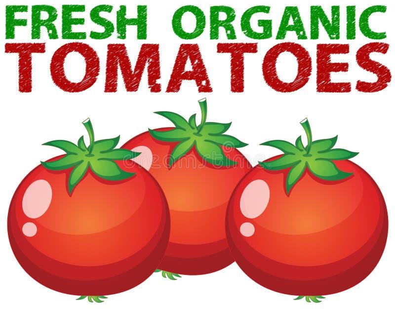 świeżych pomidorów ilustracja wektor