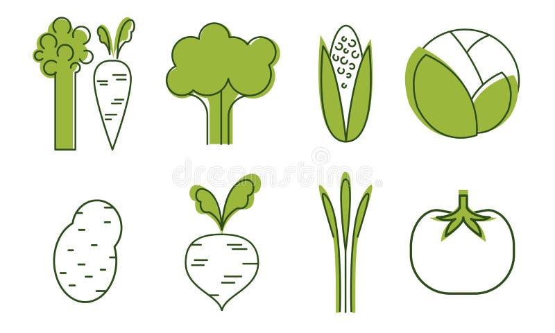 Świeżych warzyw ikony Ustawiać, kapusta, burak, pomidor, brokuły, asparagus, marchewka, kaczan, Organicznie Zdrowi jedzenie znaki ilustracji