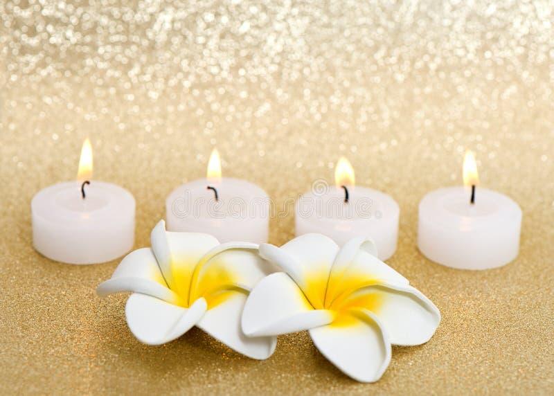 świeczki kwiatów frangipani zdroju fotografia stock
