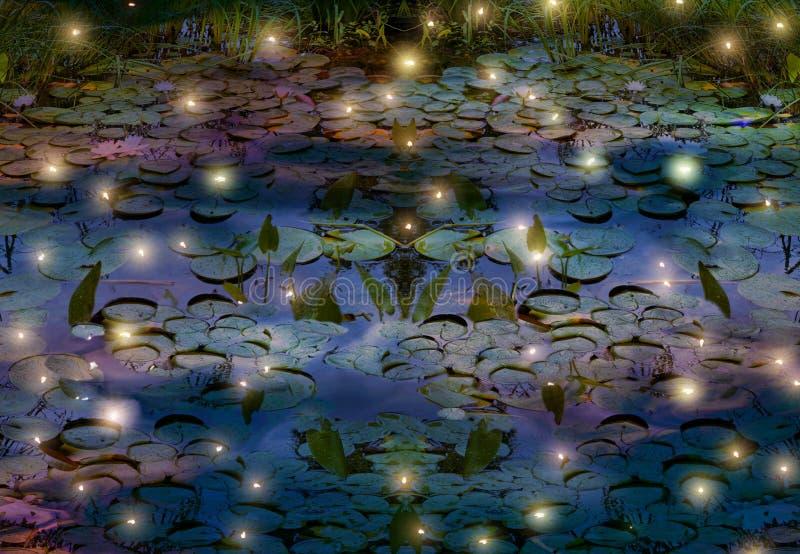 Świetliki i wodnej lelui staw przy nocą obrazy stock