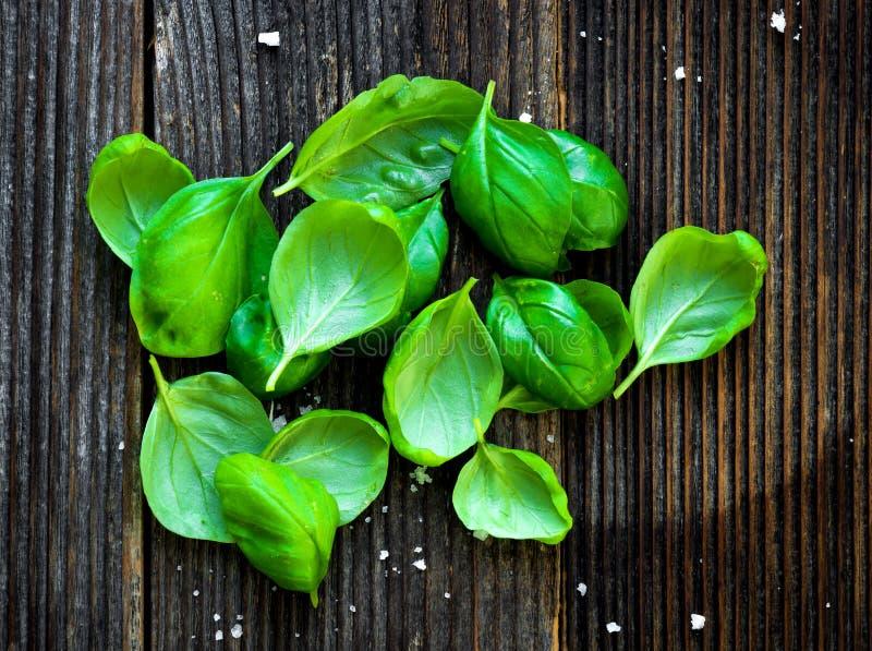 Świezi basilic liście obraz stock