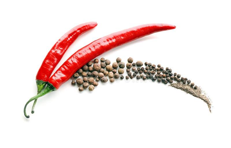 Świezi chili pieprze z wysuszonymi pikantność na białym tle zdjęcia stock