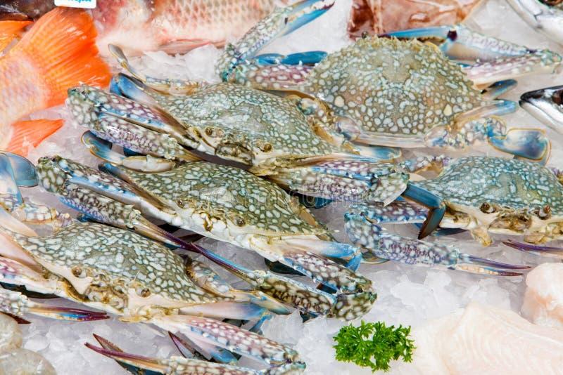 Świezi denni kraby na lodzie fotografia stock