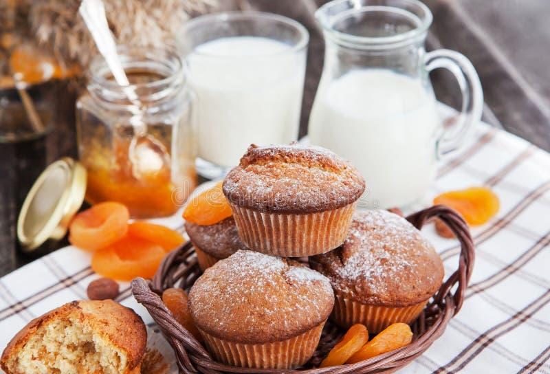 Świezi domowej roboty morelowi muffins obrazy stock