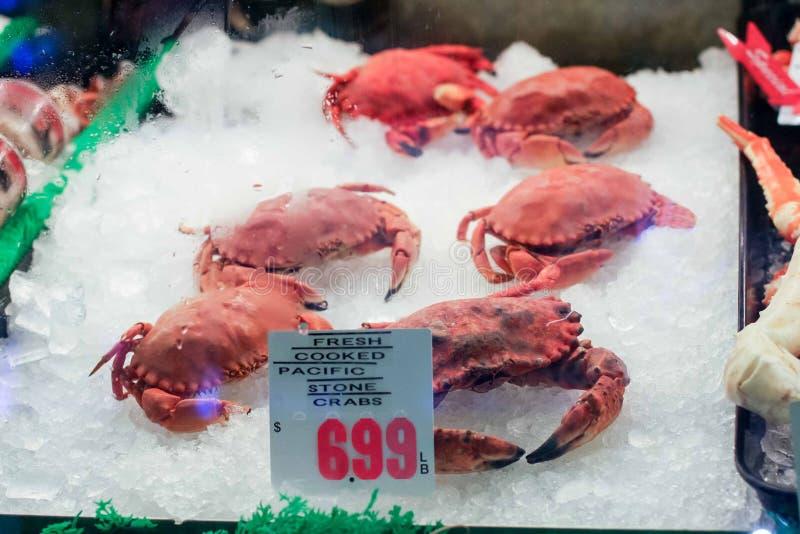 Świezi Gotujący Pacyficzni Kamienni kraby w chłodni skrzynce zdjęcie royalty free
