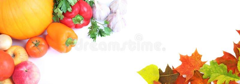 świezi jesień warzywa obrazy royalty free